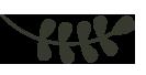 Diëtistenpraktijk Limmen en Castricum
